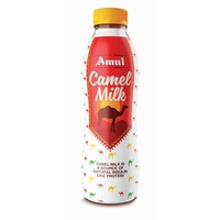 Amul Camel Milk, 500ml, pet bottle